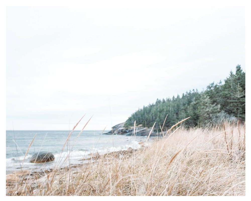 Image of Beach & Breeze