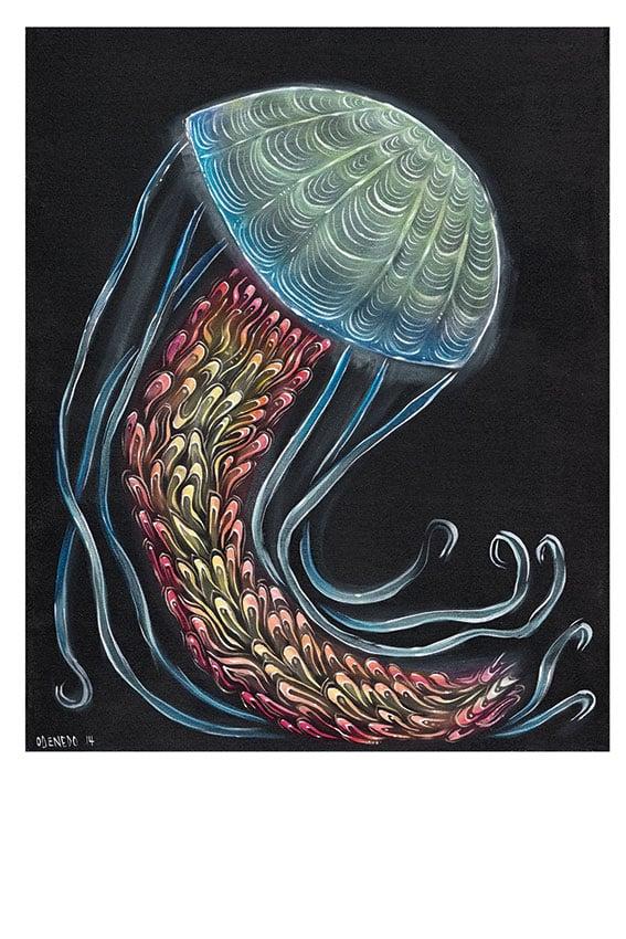 SCI Jellyfish Lock'n 2014