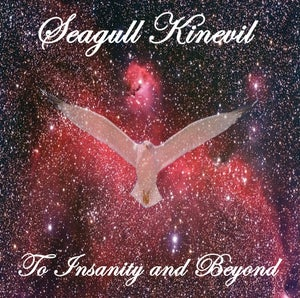 Image of To Insanity and Beyond - NEW ALBUM from Seagull Kinevil