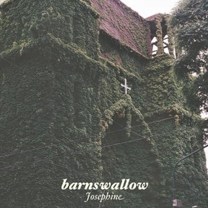 Image of Barnswallow - Josephine