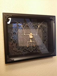 Image of 8x10 bat skeleton shadow box