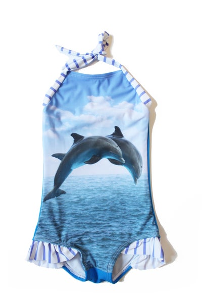 Image of Dolphin