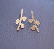 Image of grow earrings