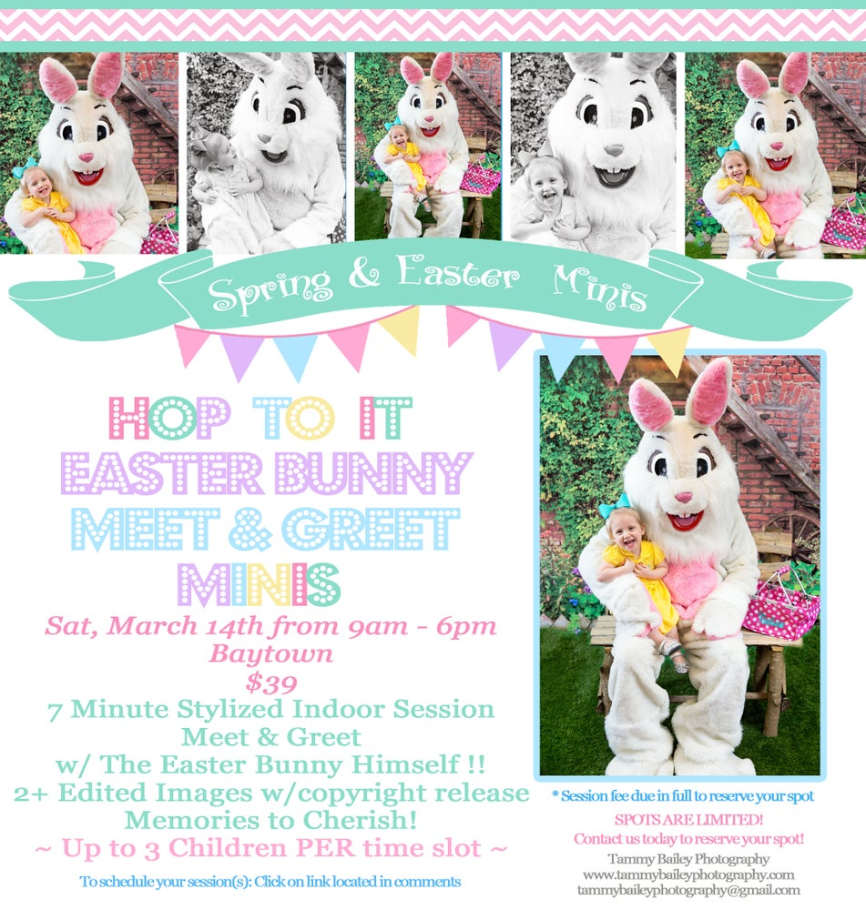 Hop to it easter bunny meet greet mini session tammy bailey image of hop to it easter bunny meet greet mini session m4hsunfo