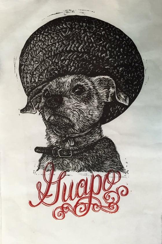 Image of Guapo