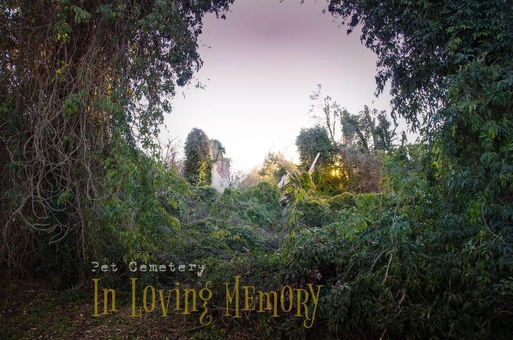Image of eBook 'Pet Cemetery...In Loving Memory' (2015)