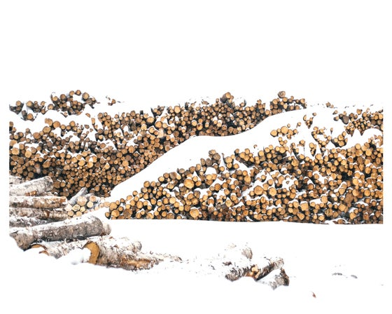 Image of Piled High