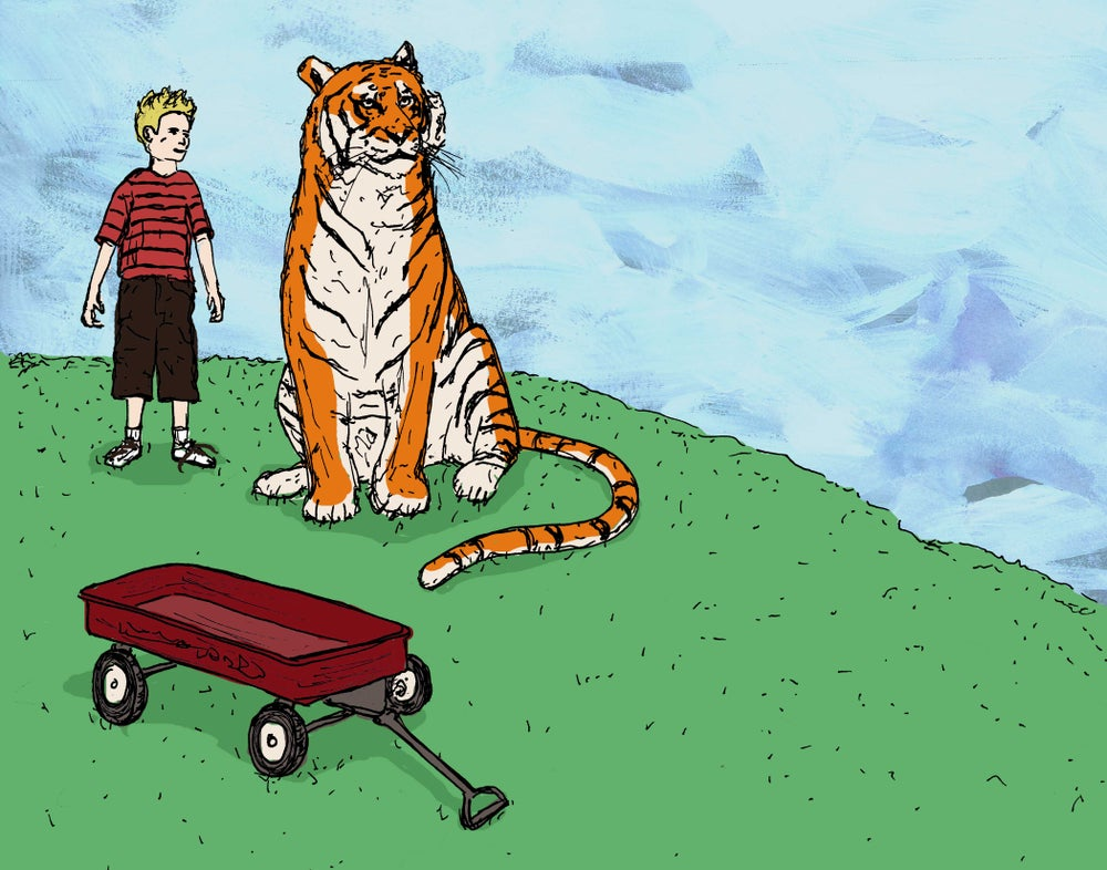 "Image of ""My Tiger and Me"""