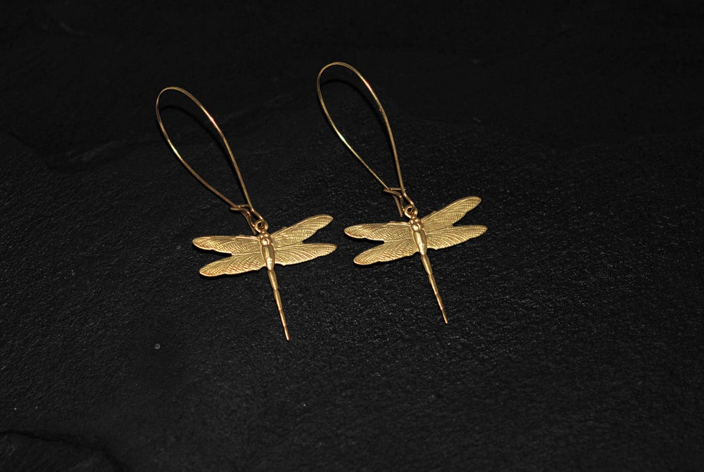Image of Pair of small dragonfly earrings in brass
