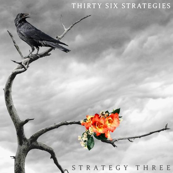 Image of Thirty Six Strategies - Strategy Three