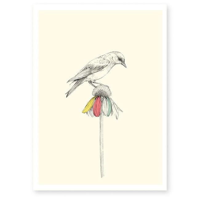 Image of Affiche A4 Oiseau et fleur