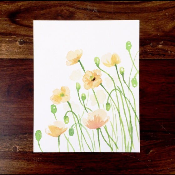 Image of Peach poppies