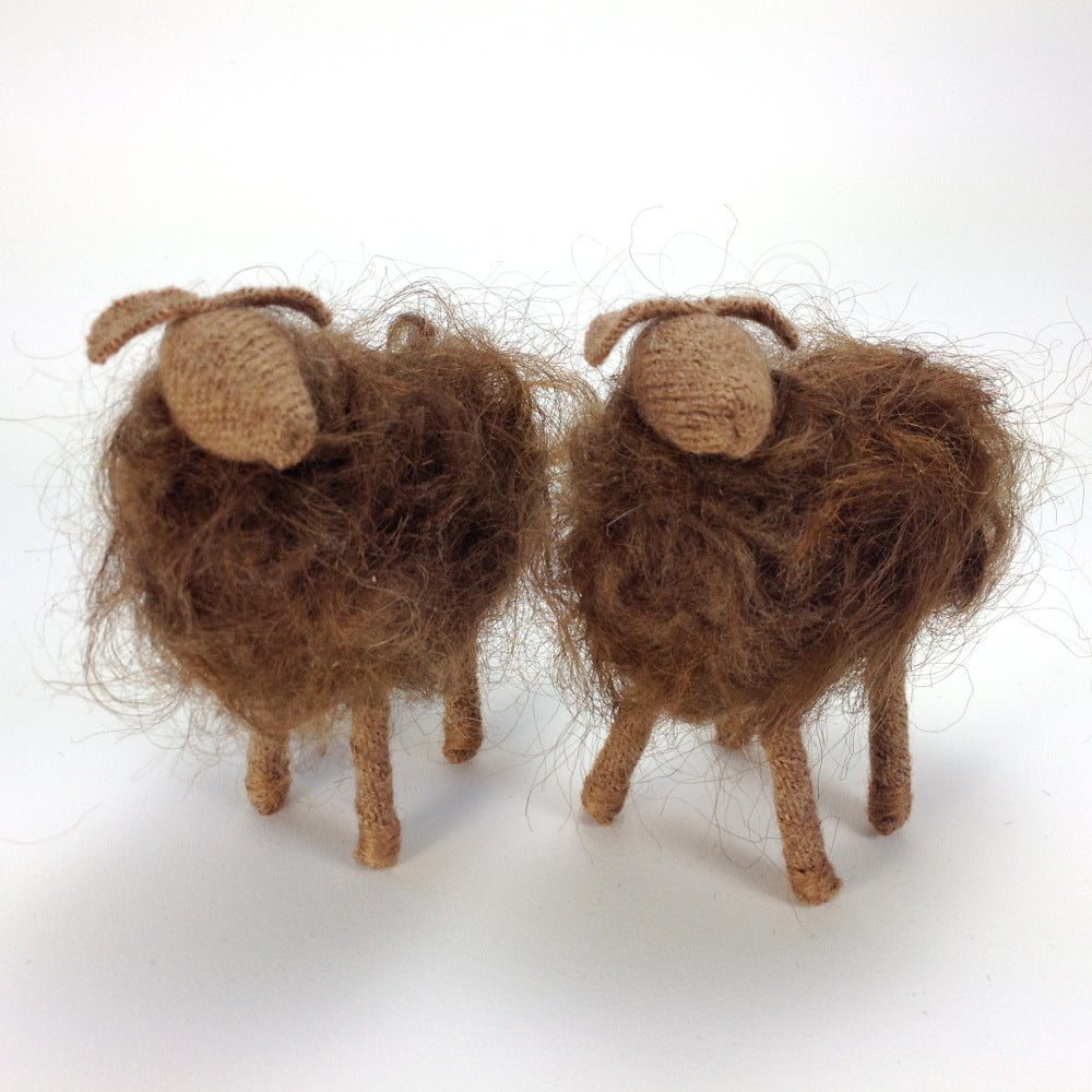 Image of Breed Specific Sheep - Icelandic Cross - Custom Order