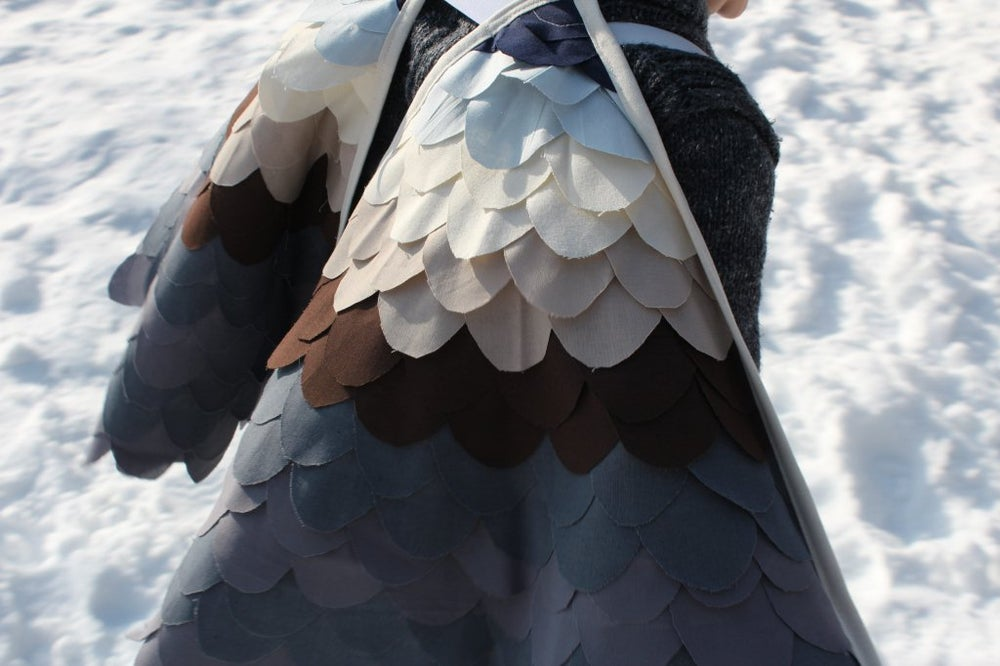 Image of Peregrine Falcon Wings