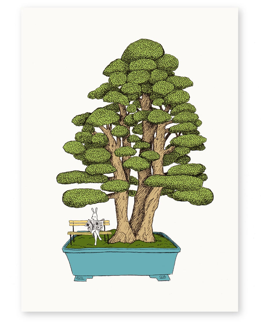 Image of 'Bonsai' A4 Limited Edition Art Print