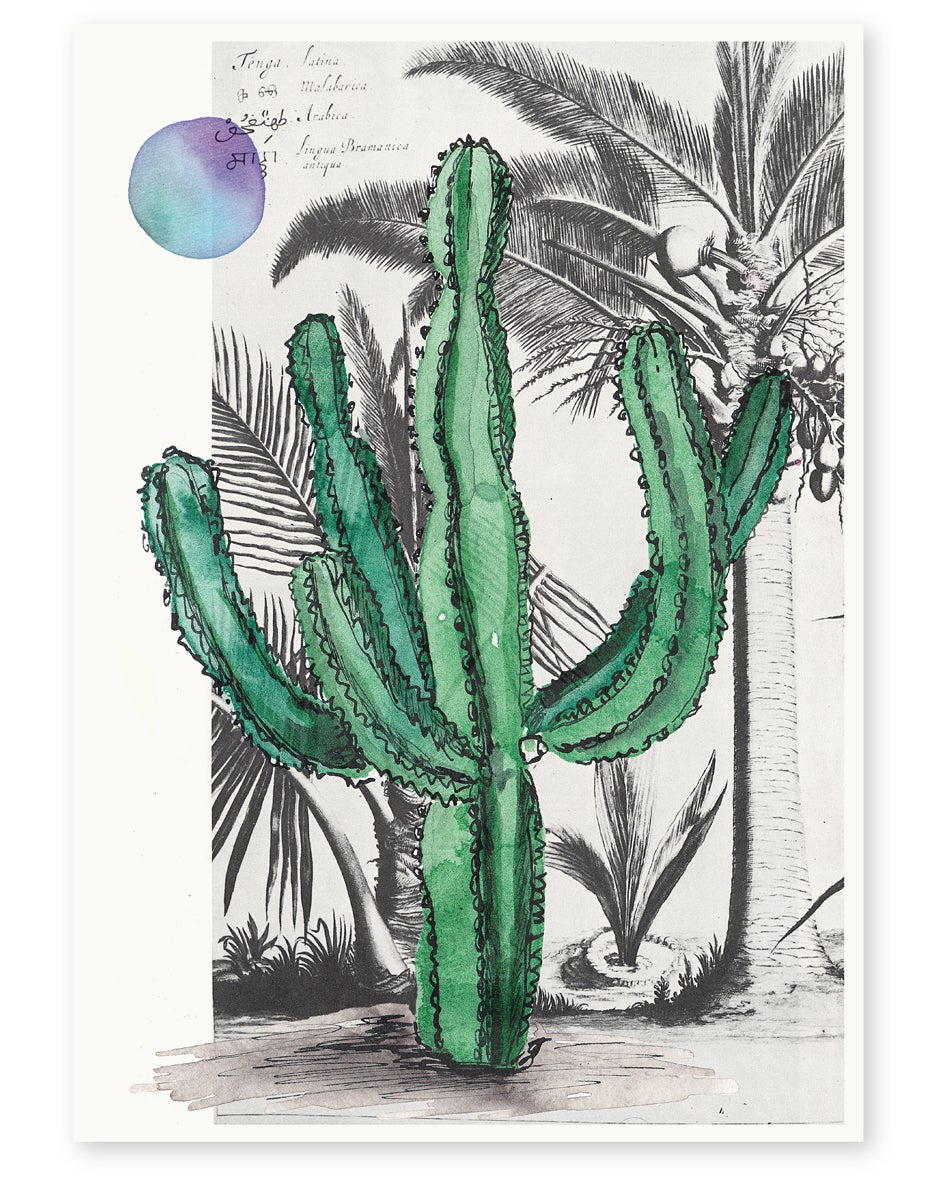 Image of 'Palm Springs' Art Print