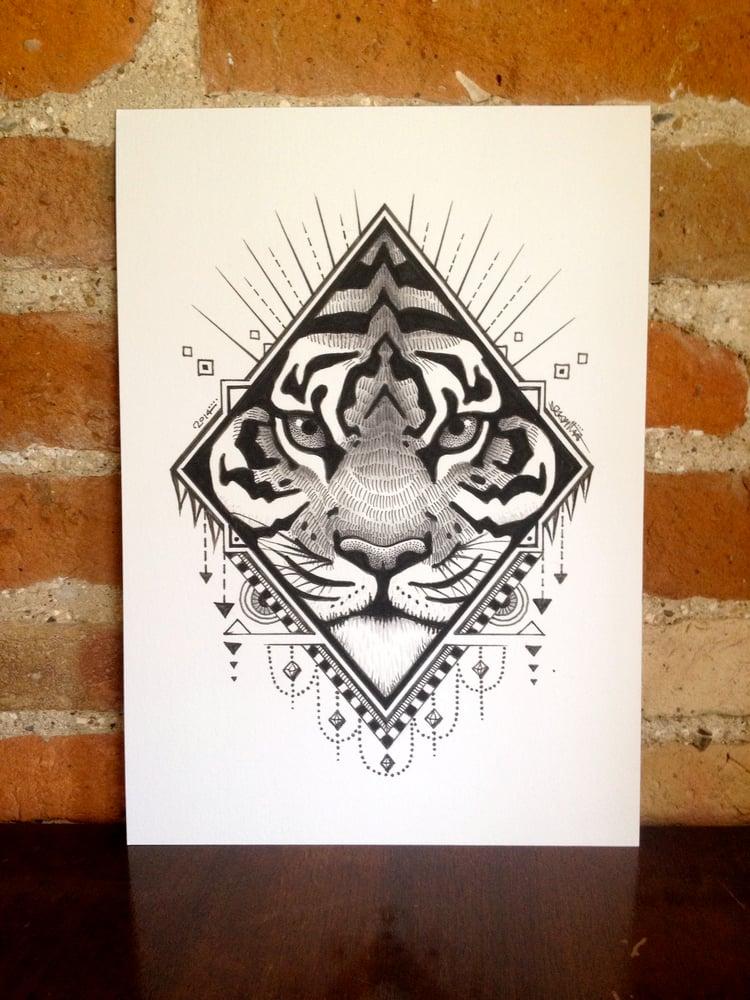 Image of Tiger Diamond.