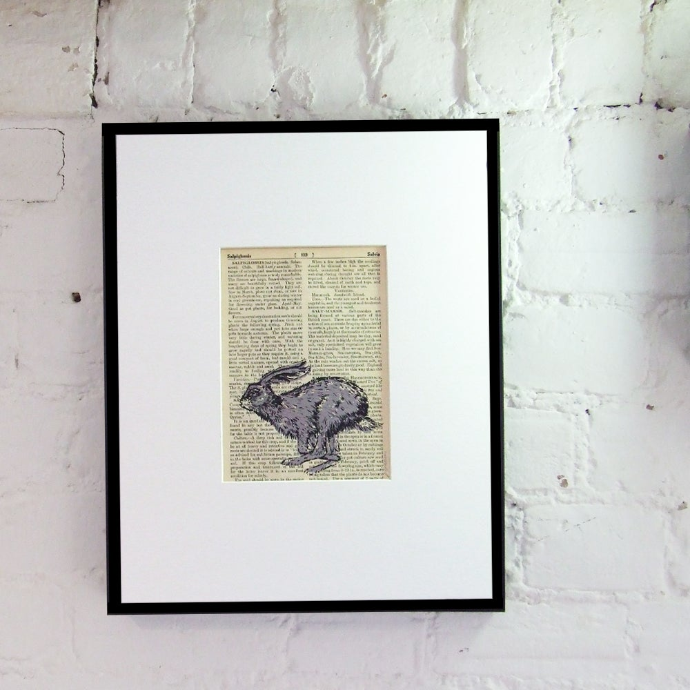 Image of PAGES HARE