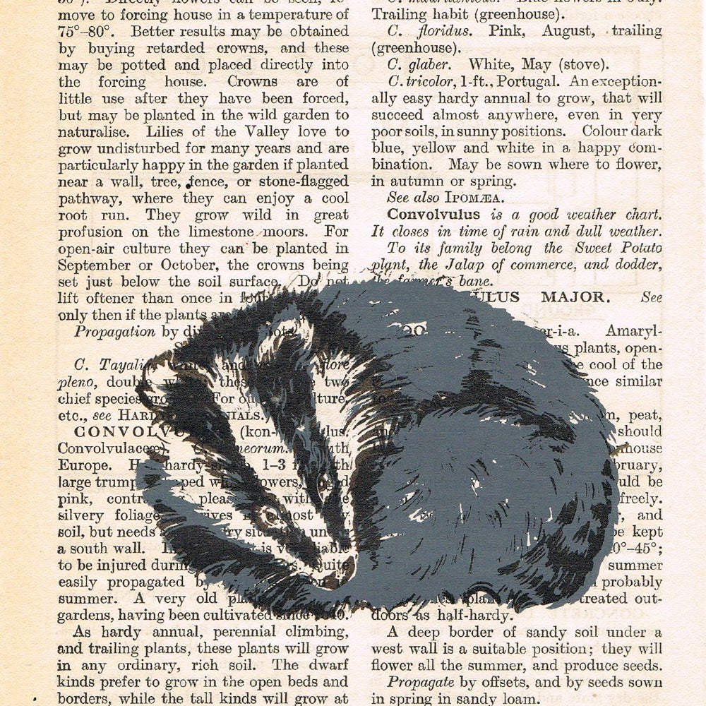 Image of PAGES BADGER
