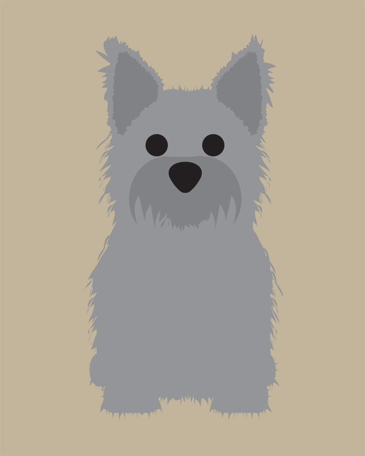 Cairn Terrier Collection