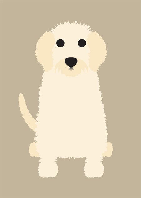 Golden Doodle & Great Pyrenees Collection