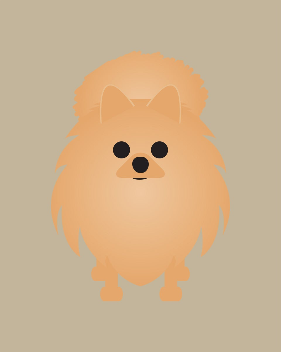 Pomeranian Collection