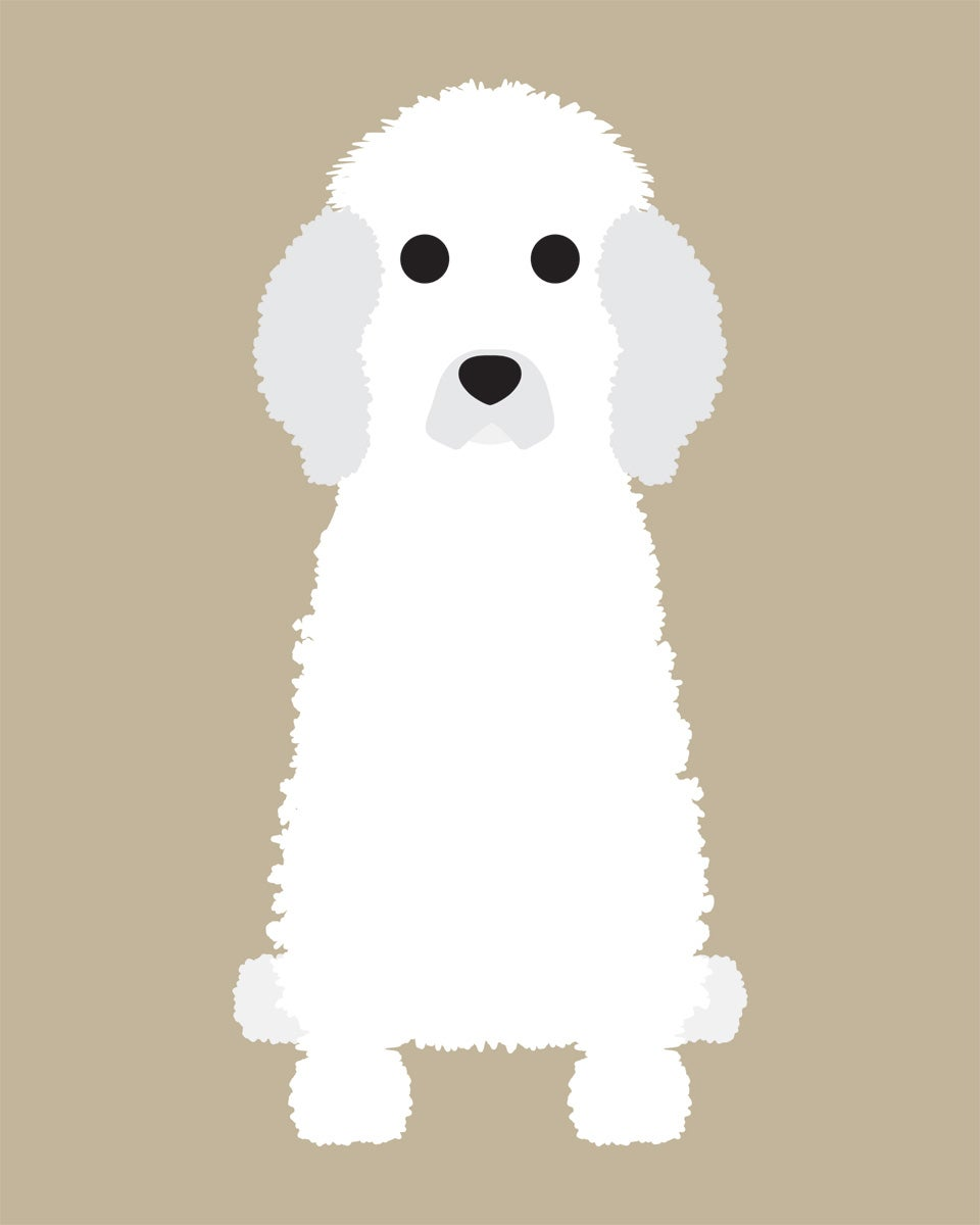 Poodle (Standard) Collection