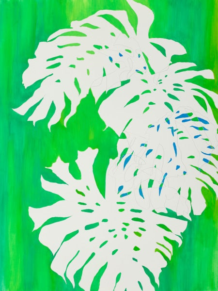 Image of Monstera No 18