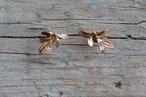 Image of Rue Earrings Wide at Top