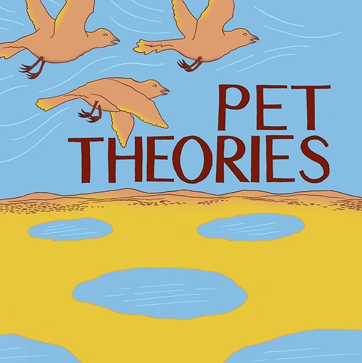 Image of Pet Theories self-titled debut album