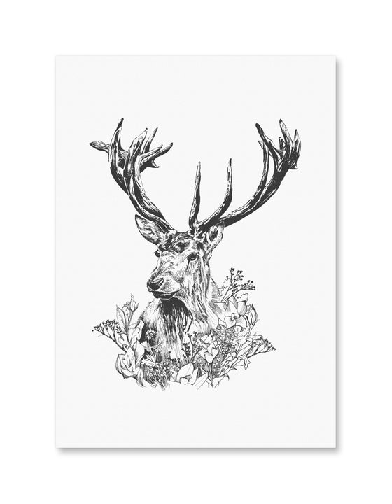 Image of Cervidae - der Hirsch, the Stag