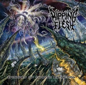 Image of RIPPING FLESH Episodes Of Chaotic Extinction CD