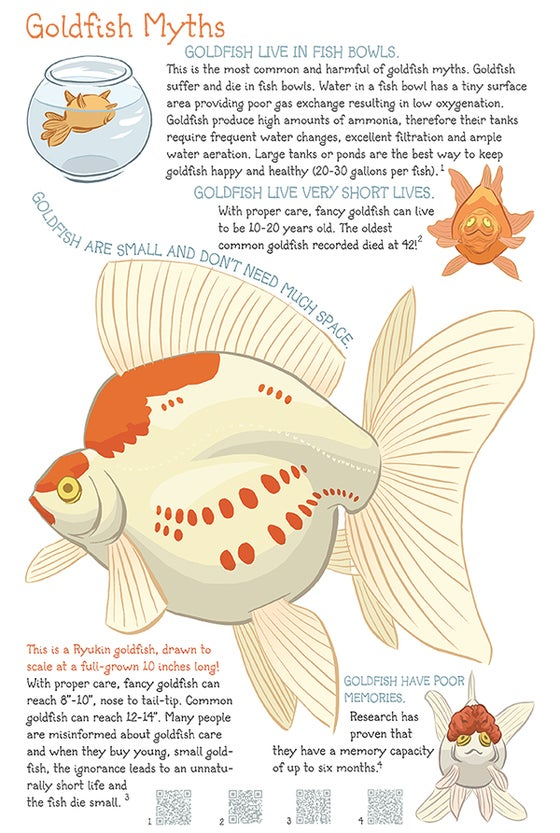 Image of Goldfish Myths Poster