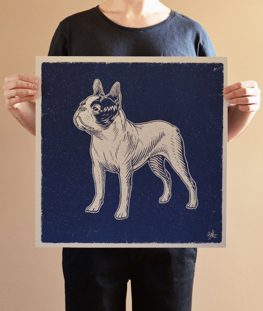 Image of Boston Terrier (Silver)