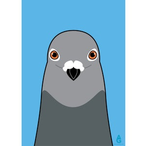 Image of Pigeon (A2 Poster)
