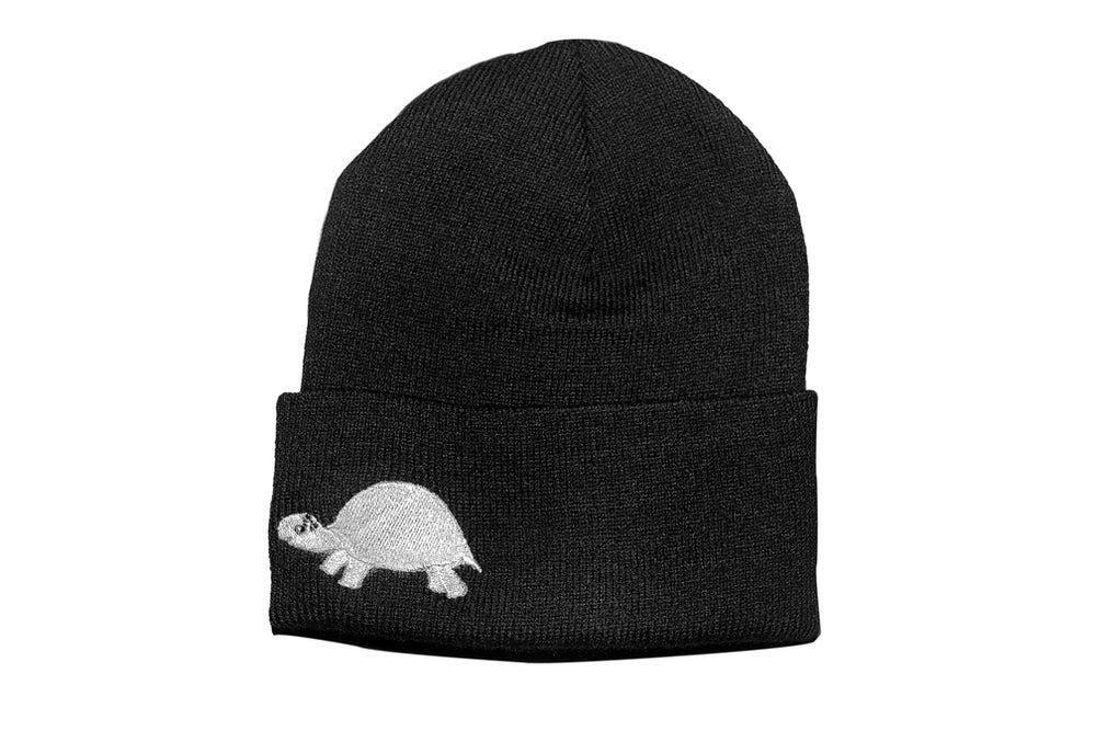 Image of Turtle Beanie