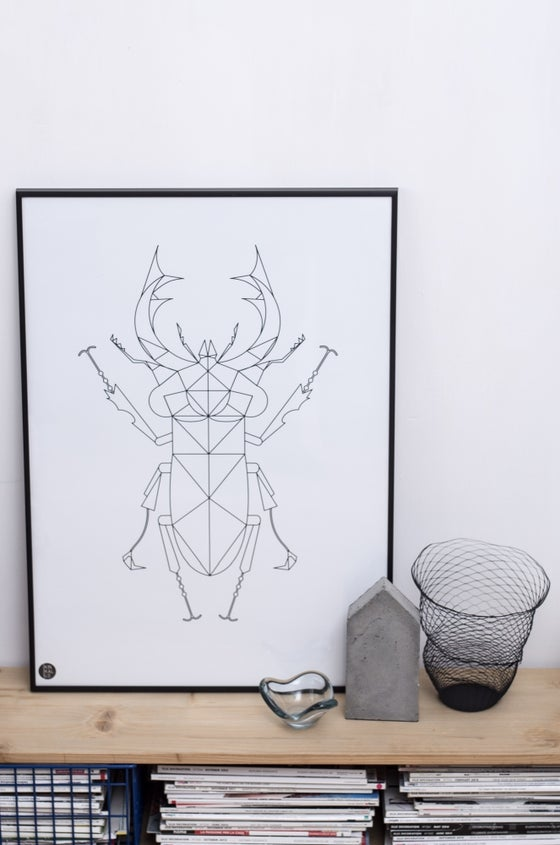 Image of Stag Beetle Poster, Black&white, 50x70 cm