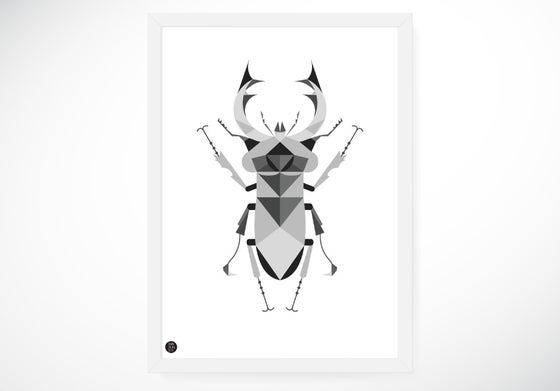 Image of Stag Beetle poster, grey, 50x70 cm