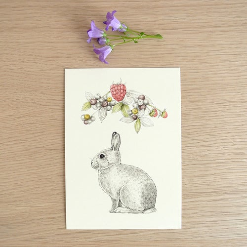 Image of Carte postale simple Lapin-fruits