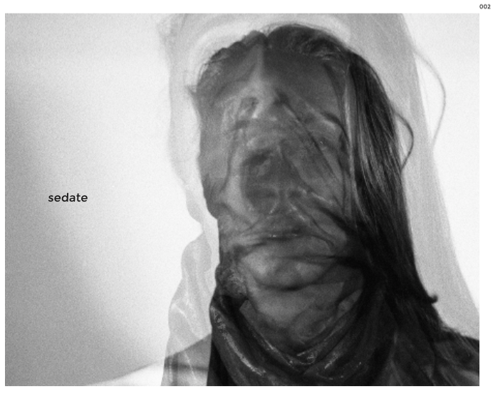 "Image of Issue 002 of Sedate Zine ""Opaque"""