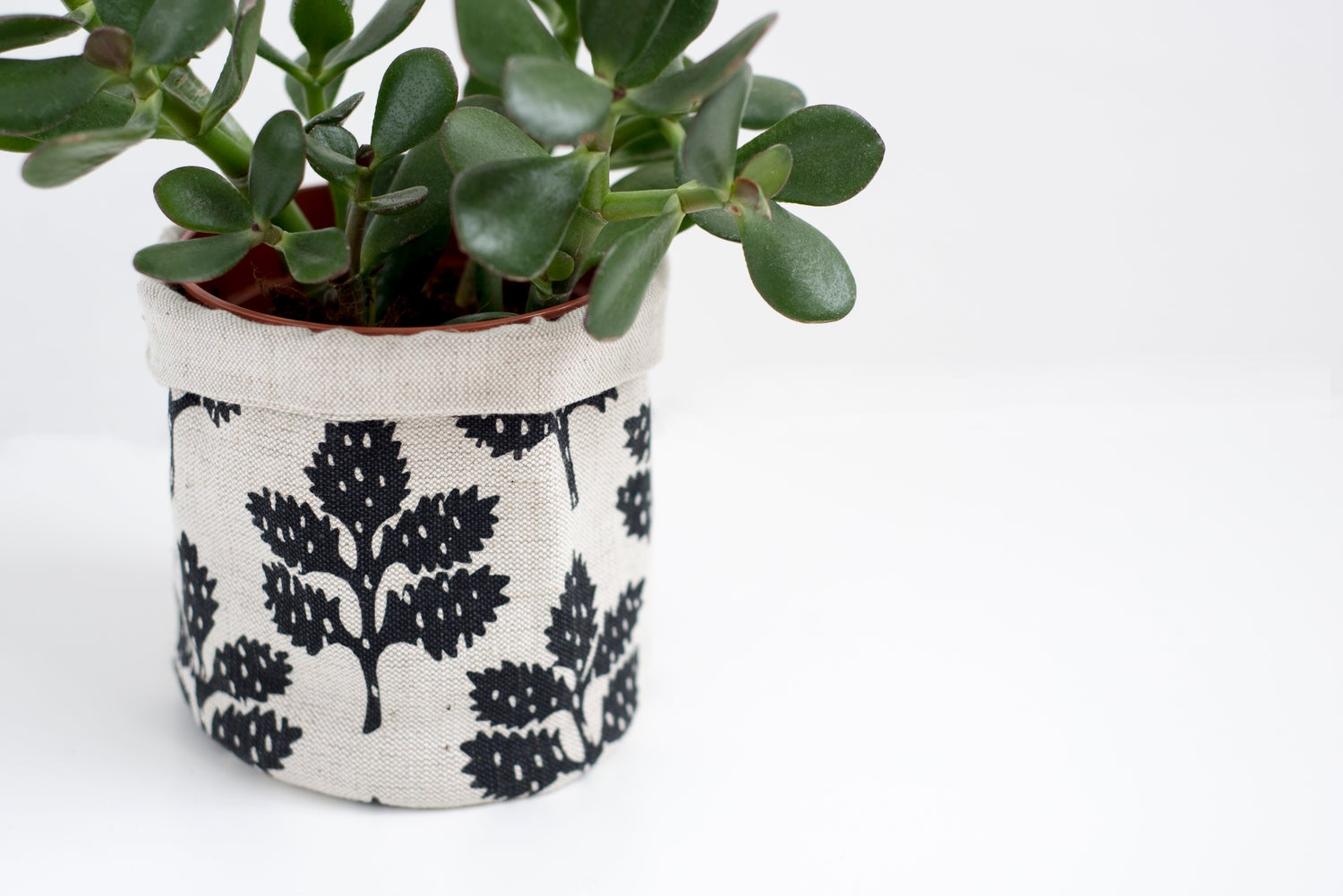 Image of 'Leafy' Container