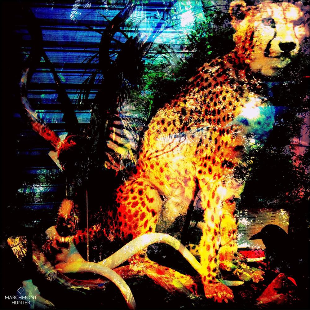 Image of Urban Jungle Silk Chiffon Scarf