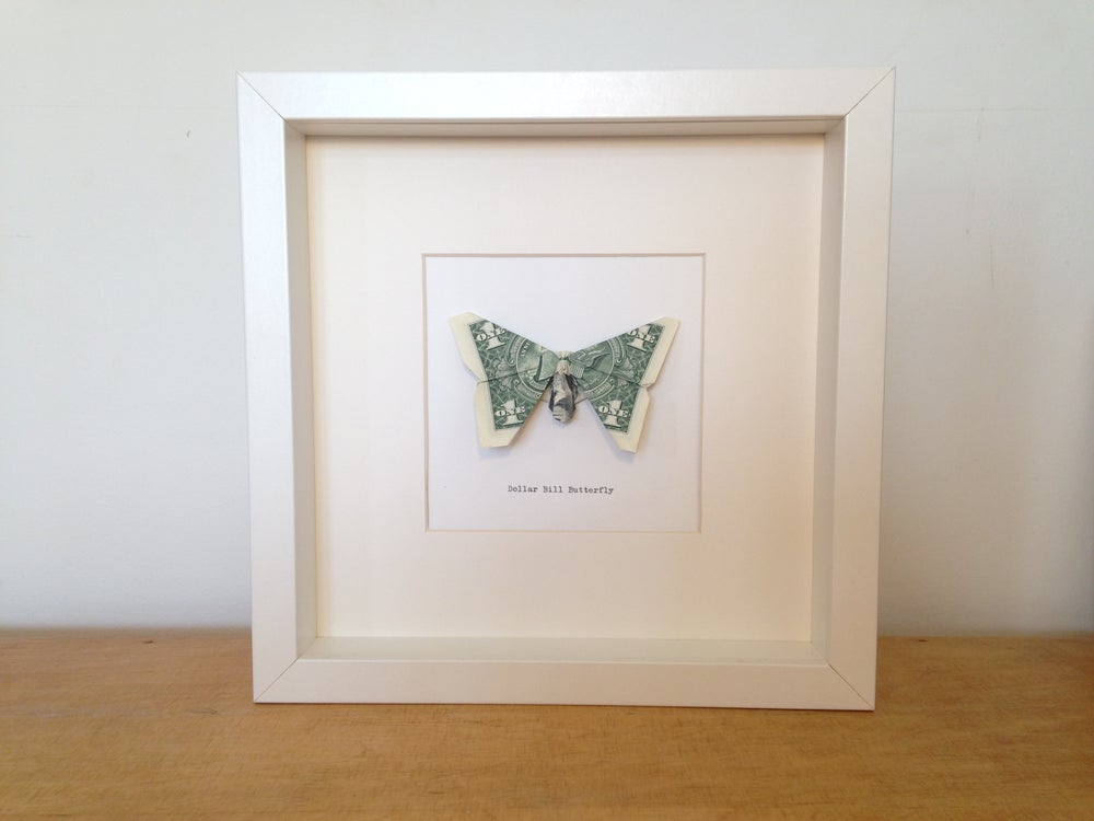 Origami Dollar Bill Butterfly (White Box Frame) / Kai Collier-Thomas
