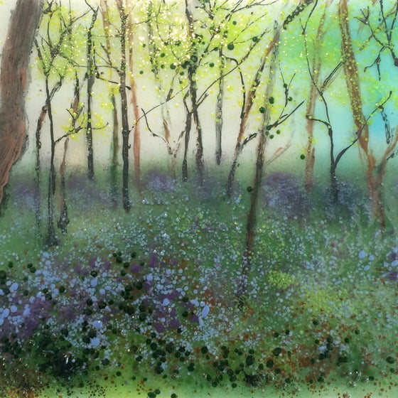 Image of Bluebell Woods