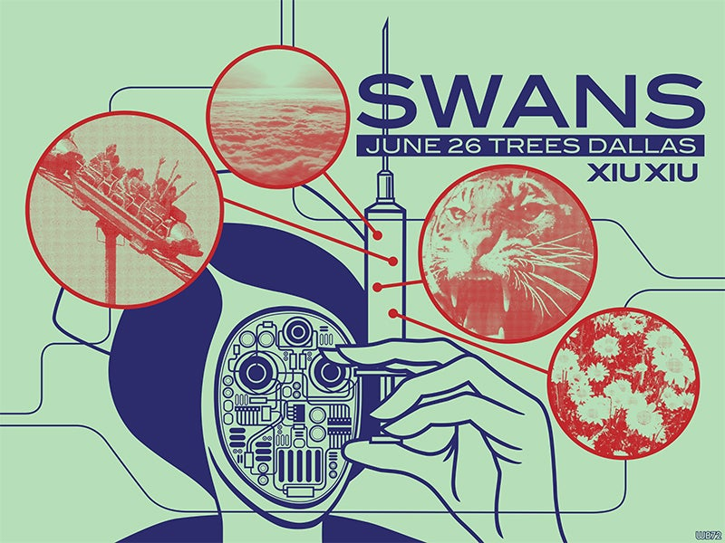 Image of Swans Dallas