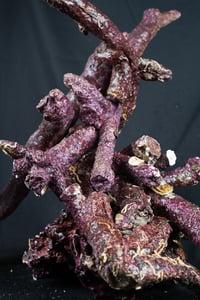 Image of Real Reef Rock (Branch Rock)