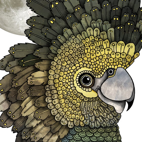 Image of Cockatoo Moon - A4 Giclée art print on HAHNEMUHLE photo rag paper