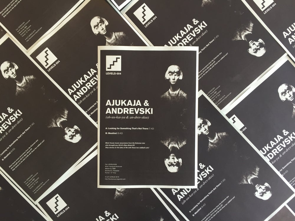 Image of Ajukaja & Andrevski | LEVELS-004