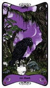Image of Hex Arcana Tarot Series: XIII - DEATH