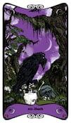 Image of Hex Arcana Tarot Series: XIII - DEATH